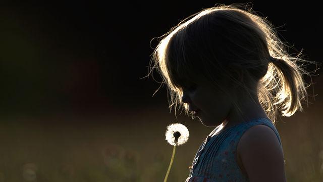 childhood-innocence-dandilion.jpg